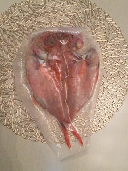魚の種類が多い