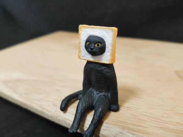 「座る変な猫」の、食パン猫
