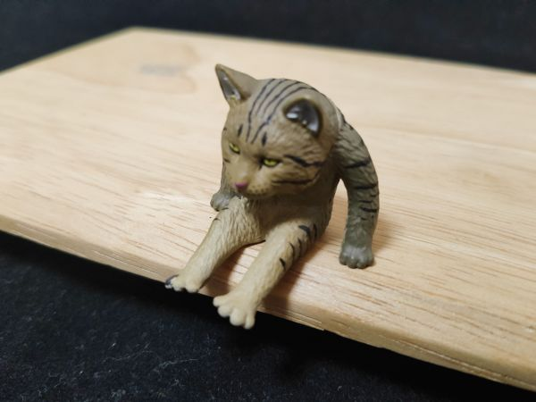 「座る変な猫」の、たくましい猫