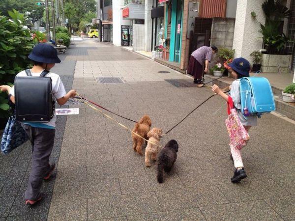 MINAさんの子どもたちが小学生だった頃=本人提供