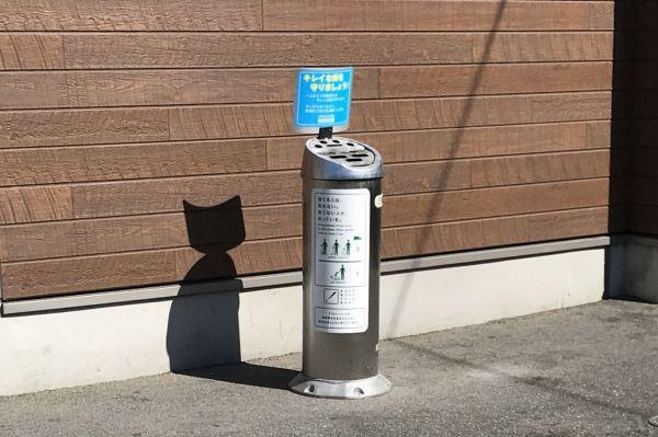 確かに黒猫がいるように見えます