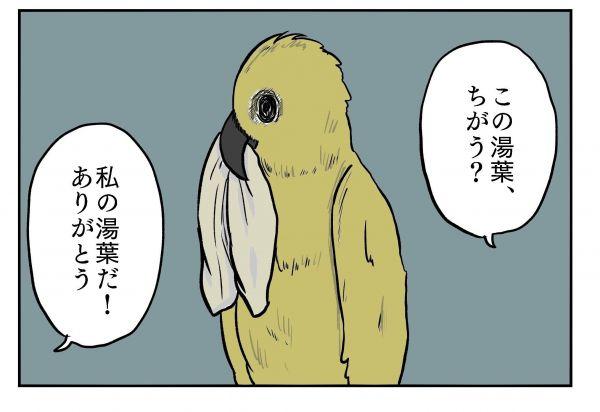 小山コータローさん(@MG_kotaro)の4コマ漫画「私の湯葉」