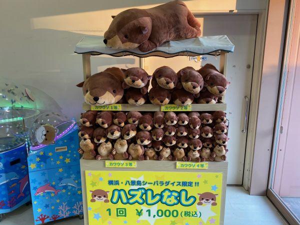 横浜・八景島シーパラダイスで販売されているカワウソくじ