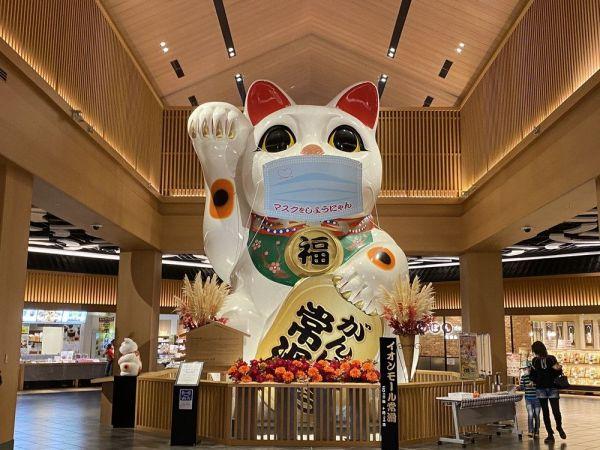 イオンモール常滑のシンボル、巨大招き猫。「他のイオンモールも、これくらいご当地色が欲しいですね」(イオえもんさん)