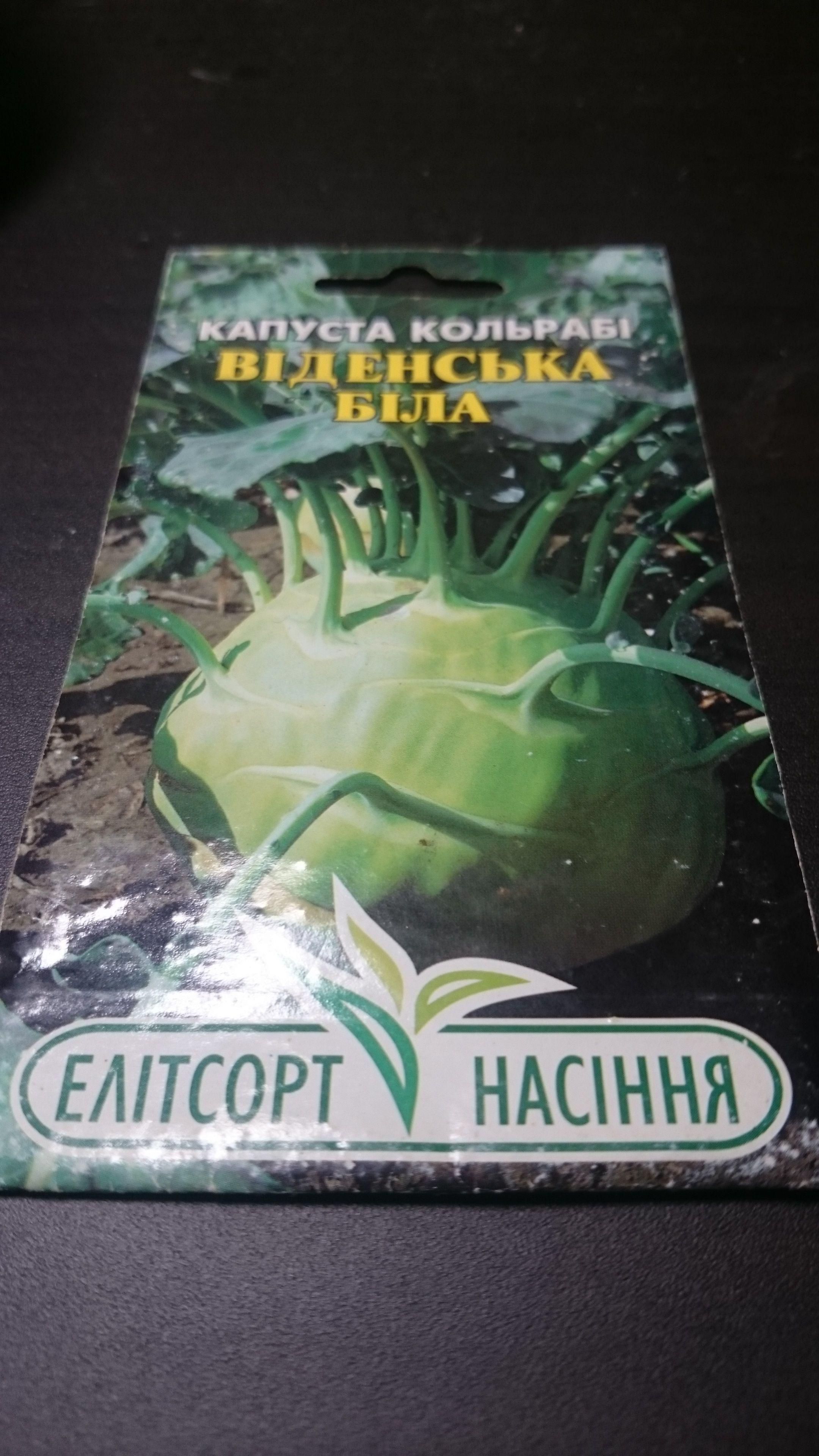 【バラ売り】ウクライナ産キャベツ「ウイーンの白」種子
