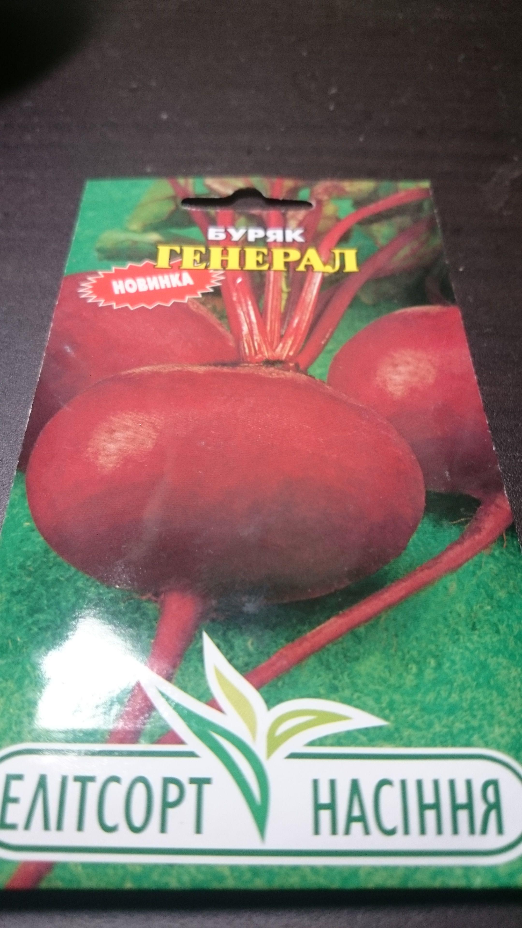 【バラ売り】ウクライナ産レッドビーツ「将軍」種子