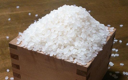 ヒシイケ家の淡路島産・お米(玄米) [29年度新米]20kg