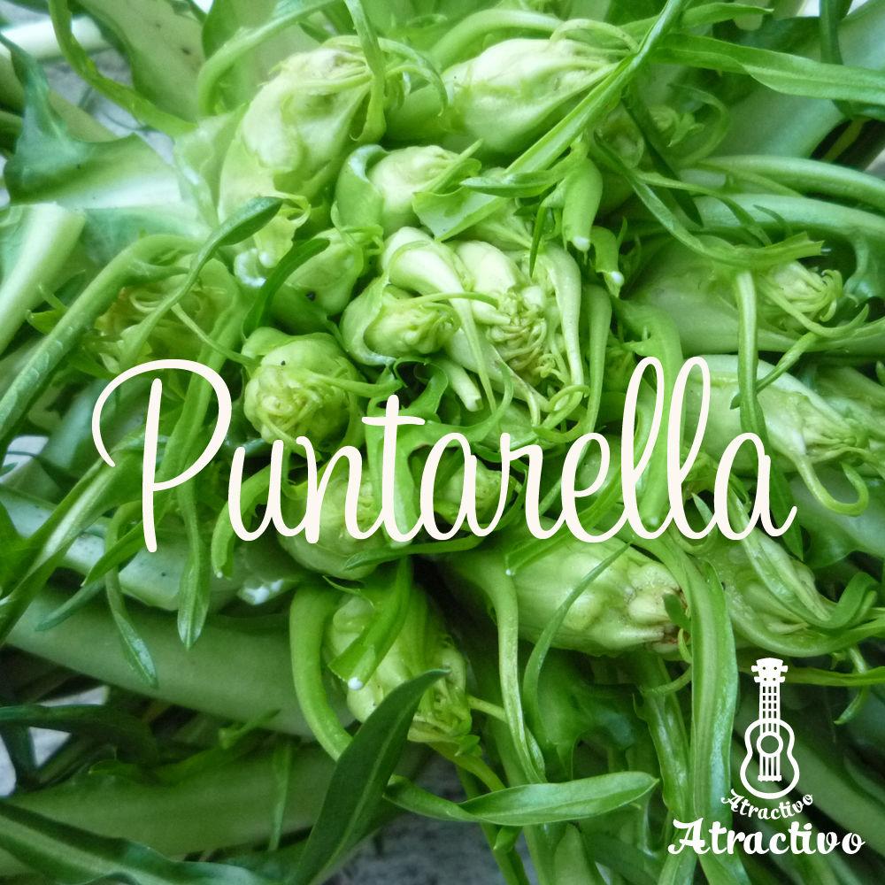 イタリア野菜プンタレッラの種