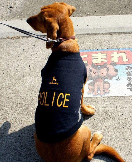 【在庫処分セール】Ballondog Police シャツ