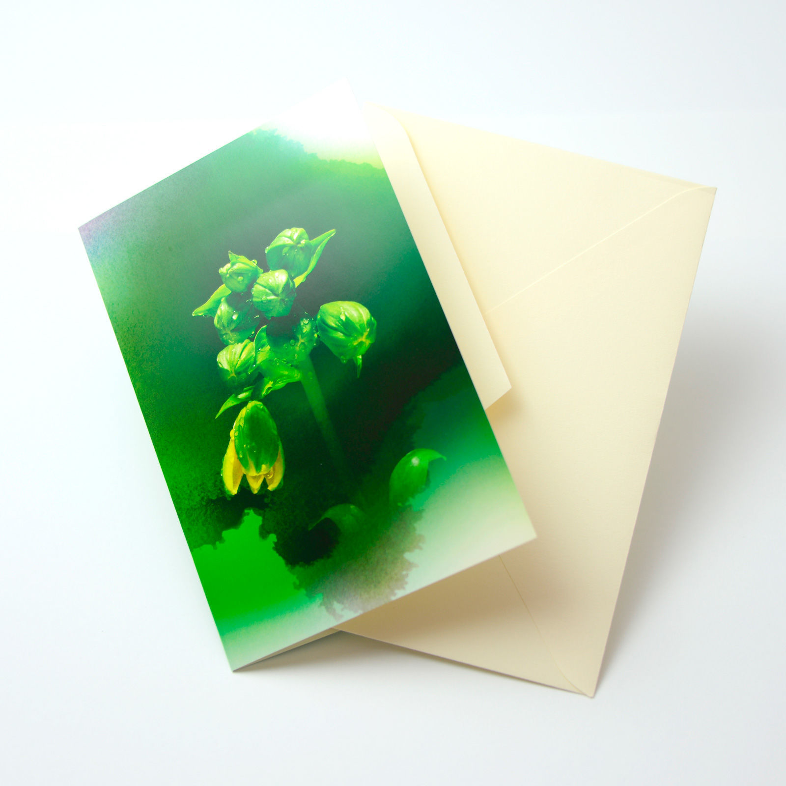 Bloom Card 03 (竹島百合)