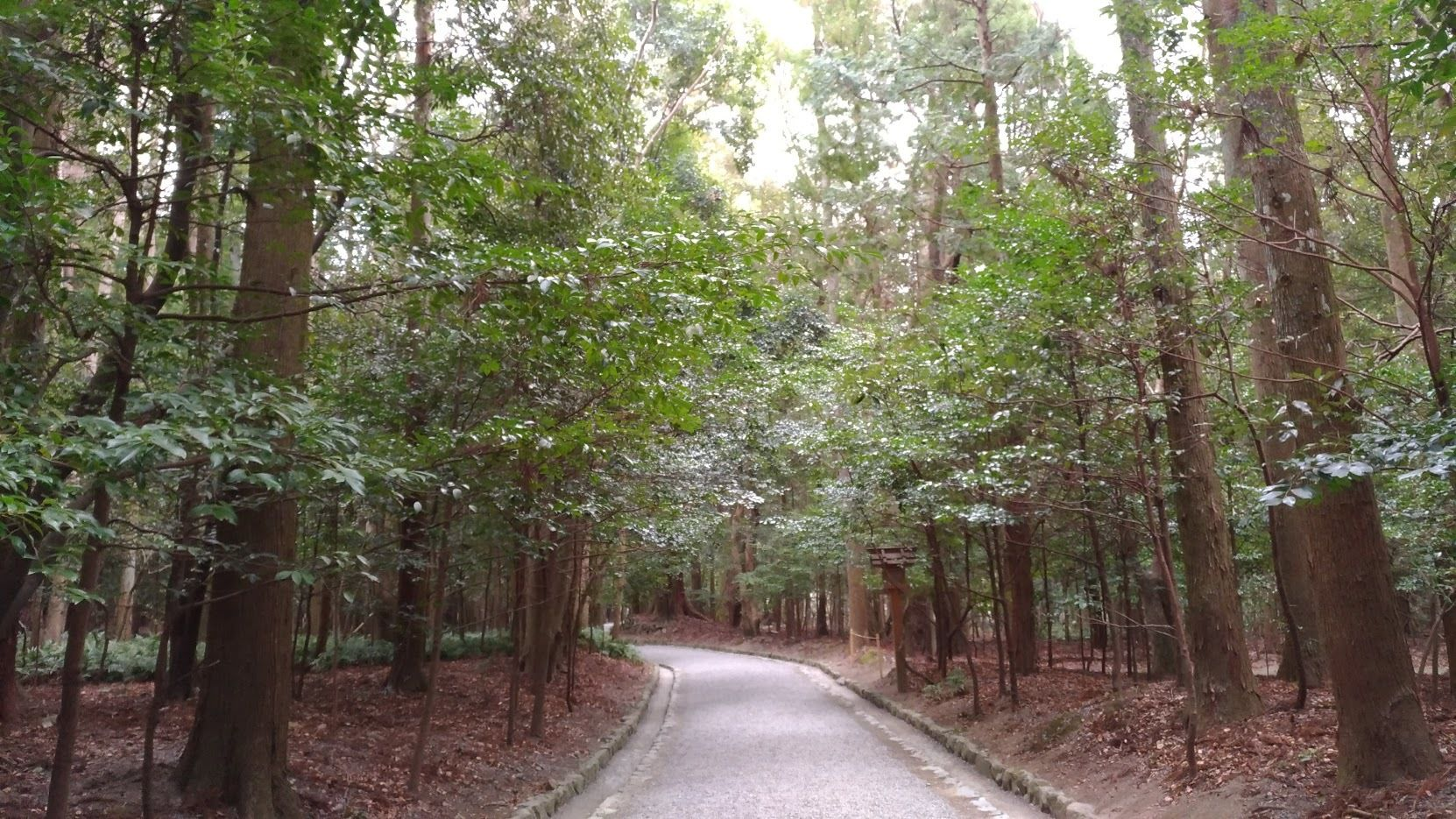 平日夜  水木 ~序~ 平成30年 3月5日