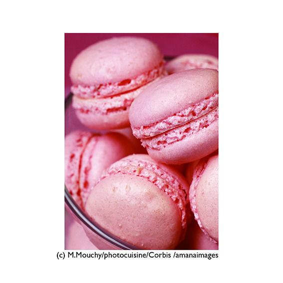 ポストカード【Rose-Flavored Macaroons】/ピンク・マカロン/スイーツ