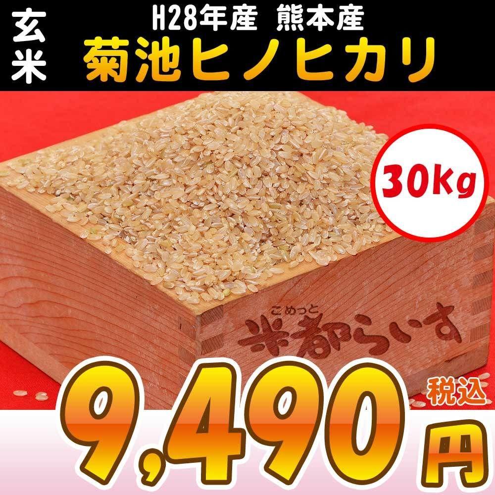 【玄米】H28年産 熊本産 菊池ヒノヒカリ 30kg