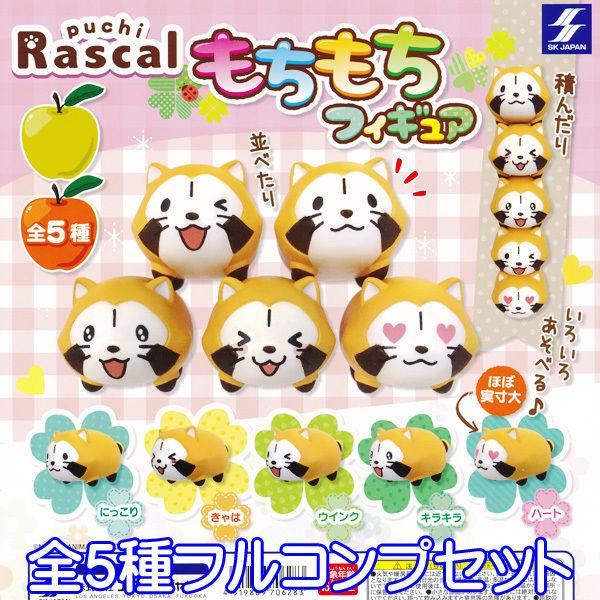 puchi Rascal あらいぐまラスカル もちもちフィギュア アライグマ 動物 グッズ ガチャ エスケイジャパン(全5種フルコンプセット)