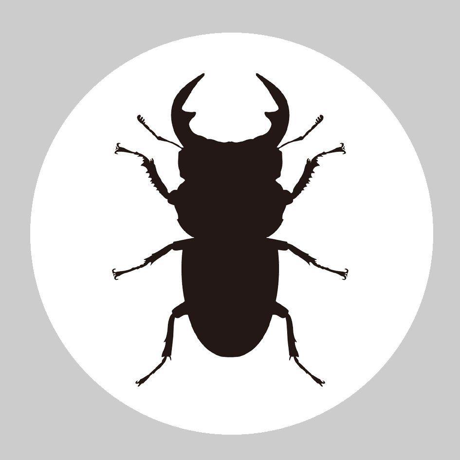 カスタムナビ0240