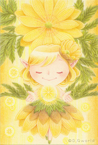 【額有り】花の妖精さん原画