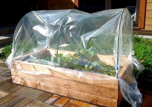 家庭菜園組立キット『Eco Farm Mini』