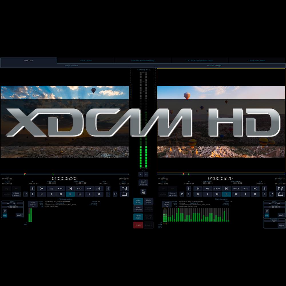 cineXtools Standard  +  XDCAM  初年度ライセンス