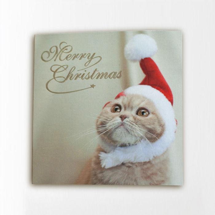 ミニクリスマスカード ふくサンタ