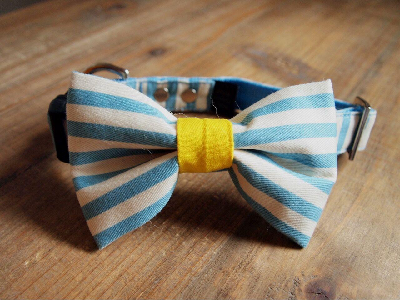 bow-tie(蝶ネクタイ)collar original 01