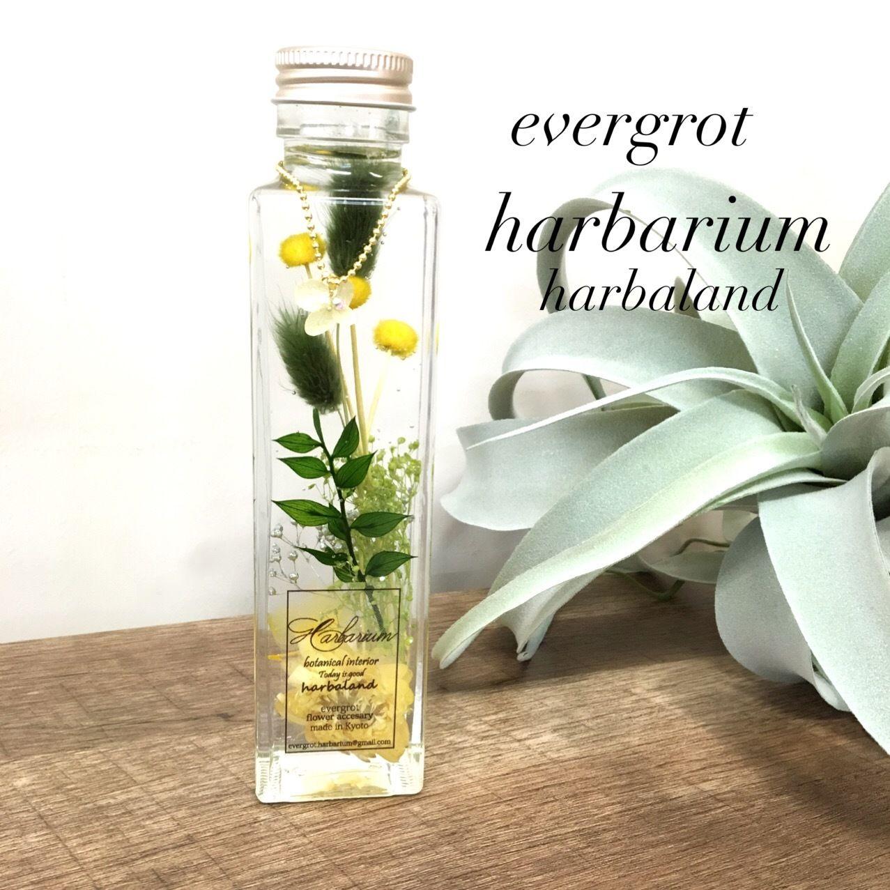【Harbalium】ハーバリウム ボタニカル