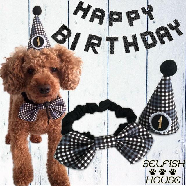 お誕生日3点セット とんがり帽子(黒)・蝶ネクタイ・レターバナー