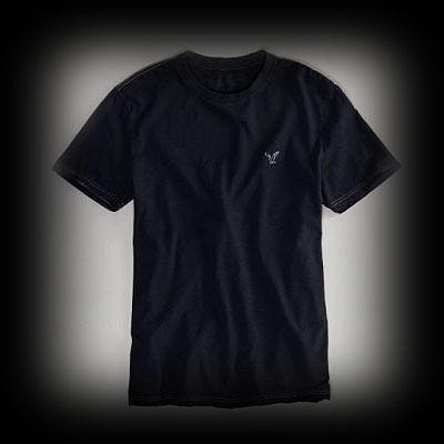 アメリカンイーグル メンズ AE Legend Crew Tシャツ
