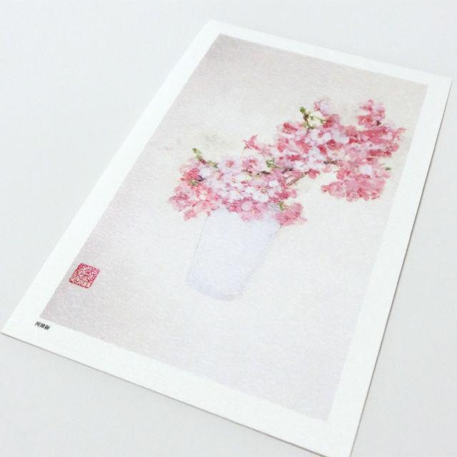 日本画 ポストカード 【河津桜】