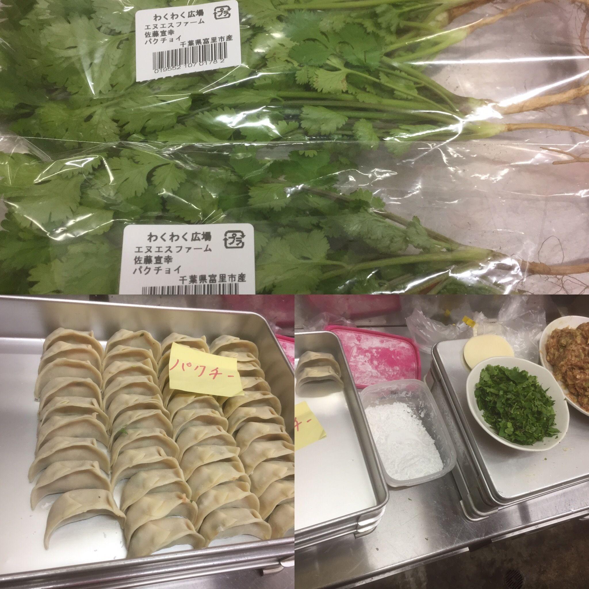 パクチー餃子(Corinder Dumpling)