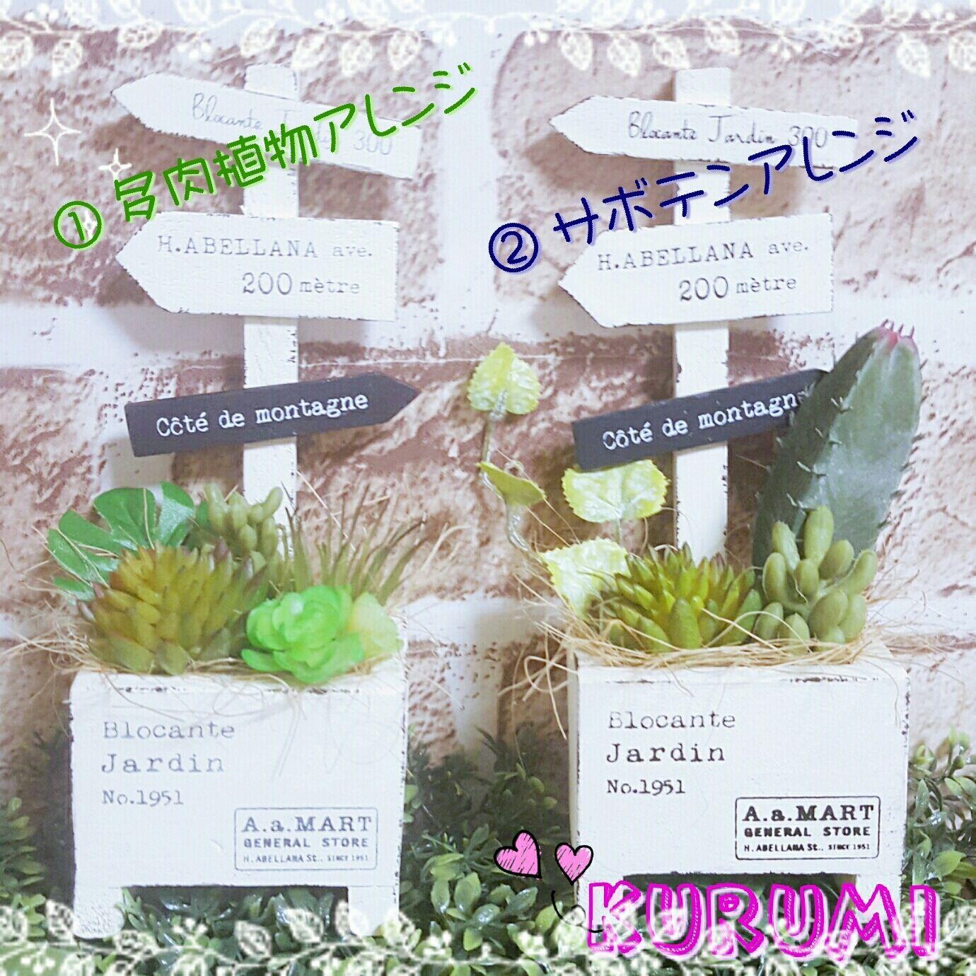 ミニサインプランターの多肉植物とサボテン