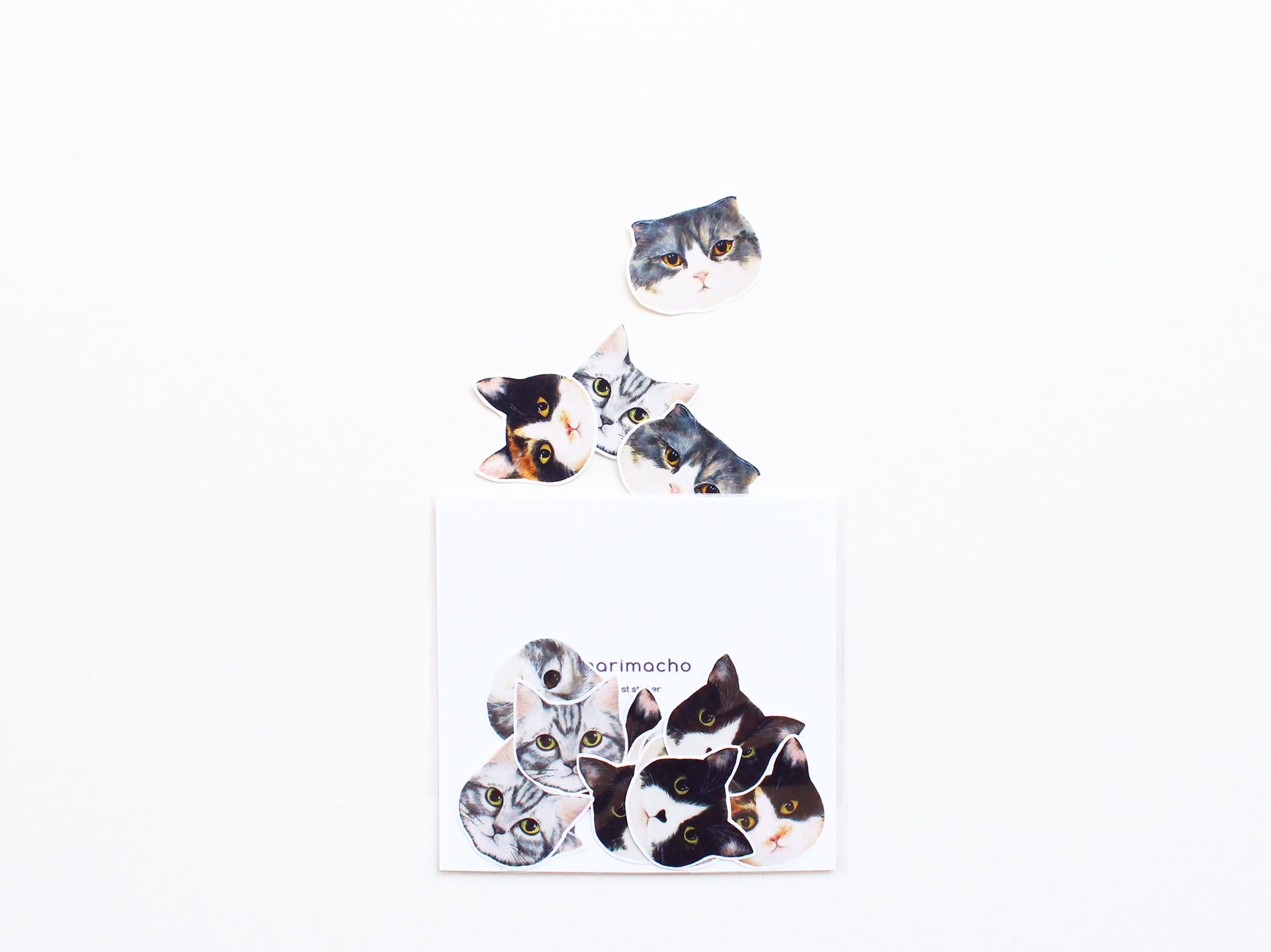 イラストフレークシール-Cat-