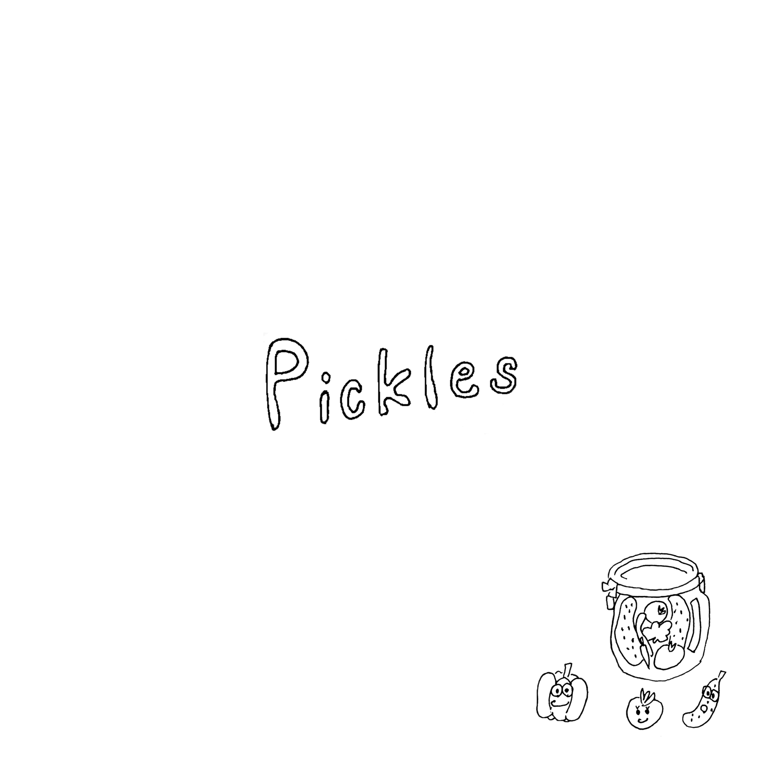 "l'avion 4th album ""Pickles"""