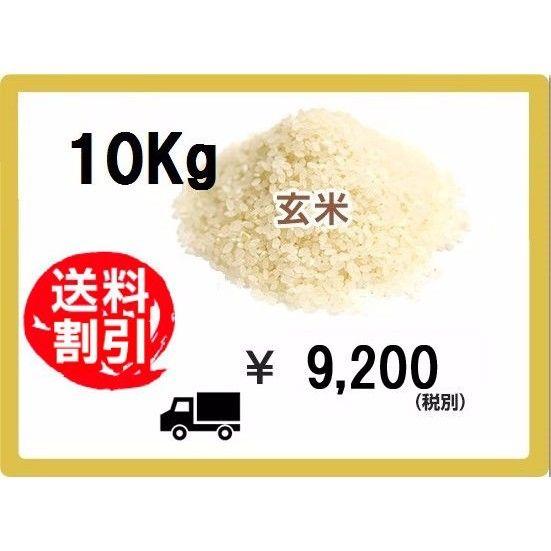 玄米 10Kg(税込み)