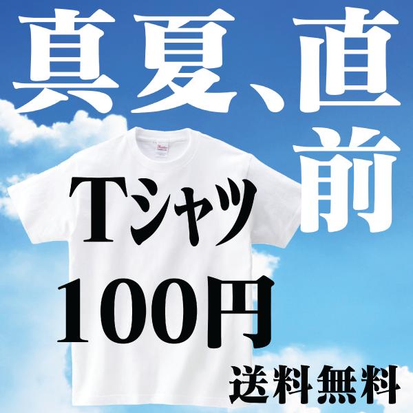 真夏直前 初めてのTシャツは100円!【DM便/送料無料】