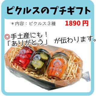 ピクルスのプチギフト【ギフトセット 熨斗対応可、送料別】