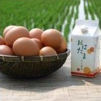 【鎌田醤油】たまごかけ専用おはたま醤油4本