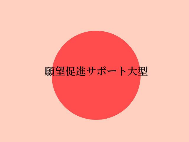 願望成就サポートグッツ(大型)