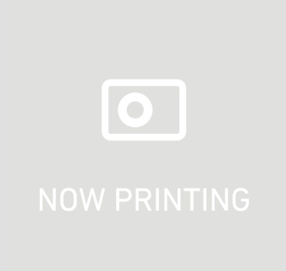 ヒルズ サイエンス・ダイエット シニアライト 小型犬用 肥満傾向の高齢犬用 750g