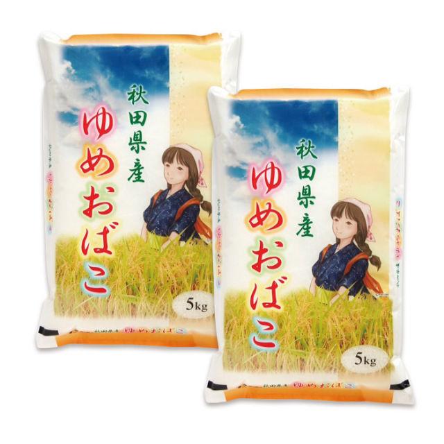 平成28年秋田県産ゆめおばこ 5kg×2 新米