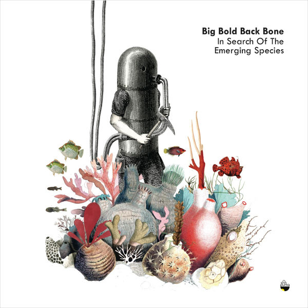 Big Bold Back Bone / IN SEARCH OF THE EMERGING SPECIES (CD)