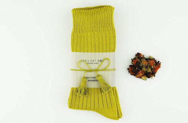 草木染めオーガニックコットンリブ編み靴下~芥子色(からし)~