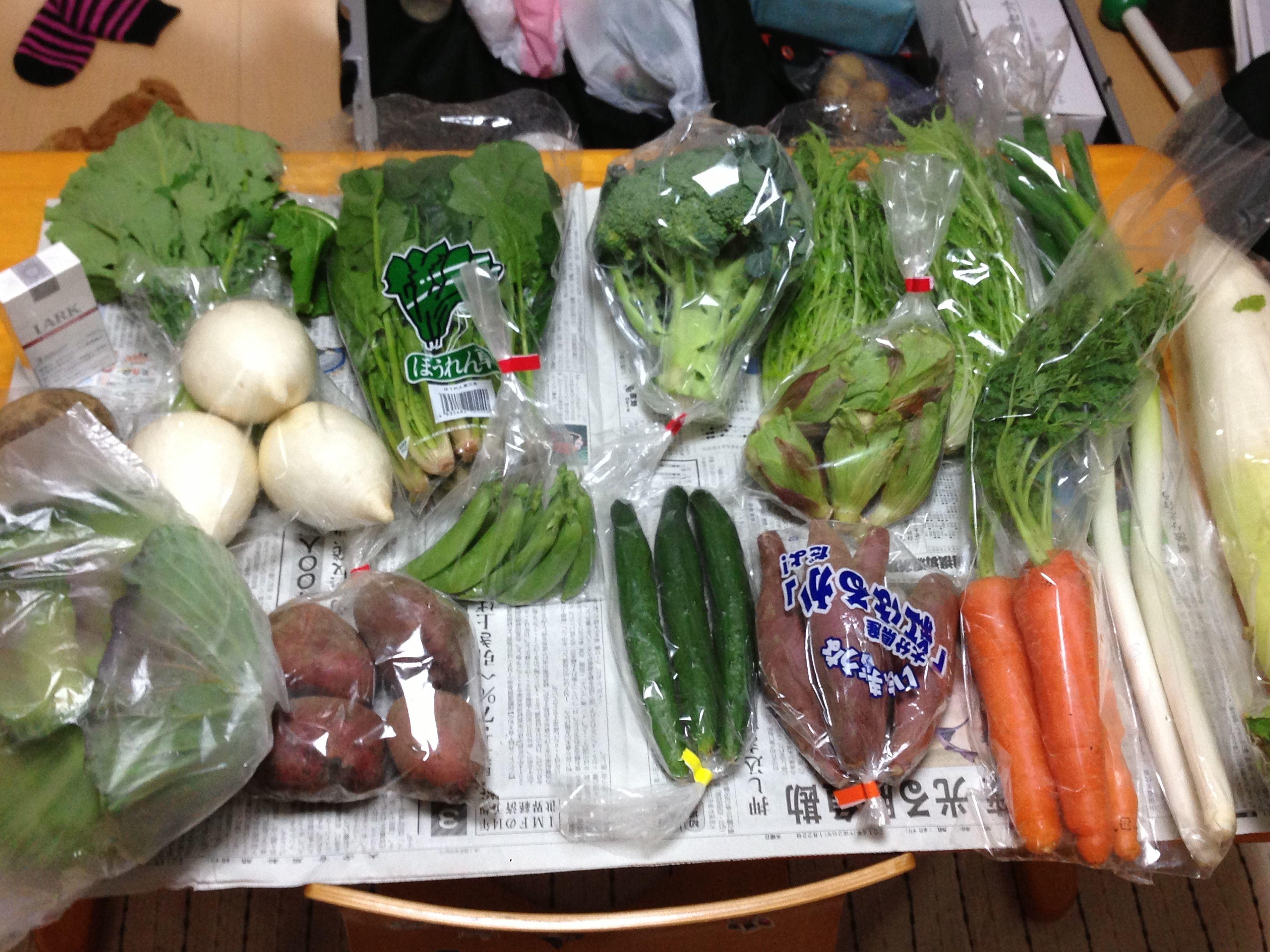 【大分・日出】今が旬!よかもん野菜詰め合わせ12種類 (3~4人様用)