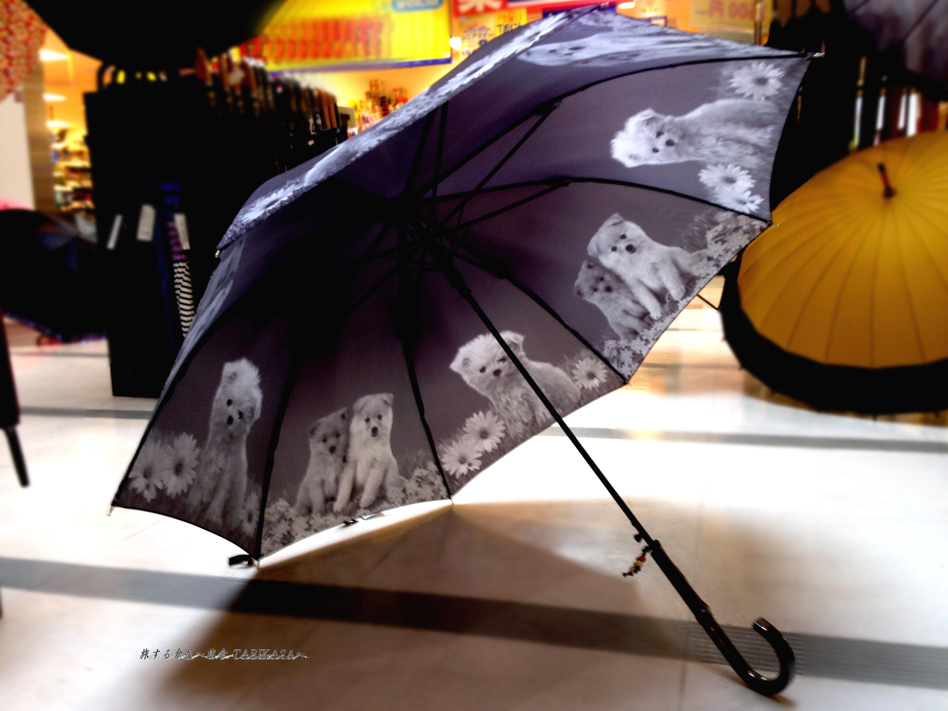 【 Monotone 】傘専門店 通販 東京 レディース ワンタッチ ジャンプ 旅傘【Animal Series  dog】