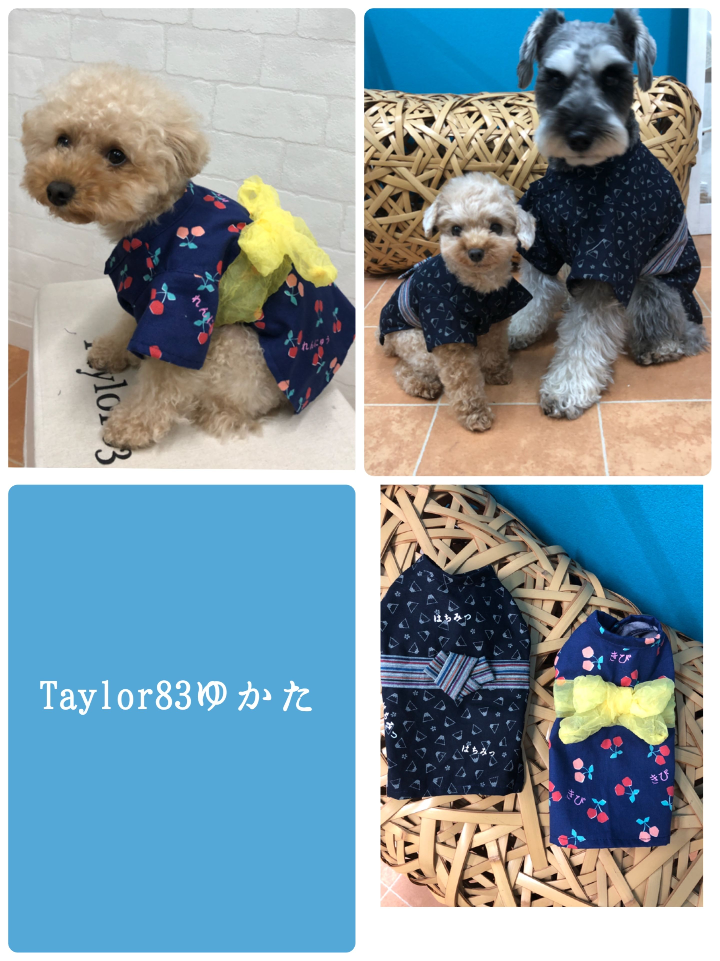 Taylor83ゆかた(うちわ付)  富士山&さくらんぼ