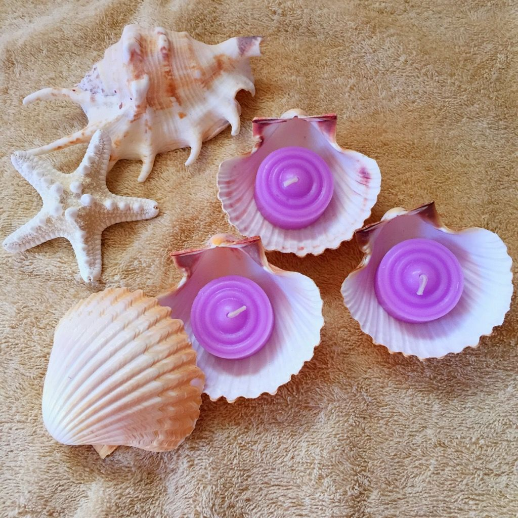 貝殻アロマキャンドル(ANNA SUI)