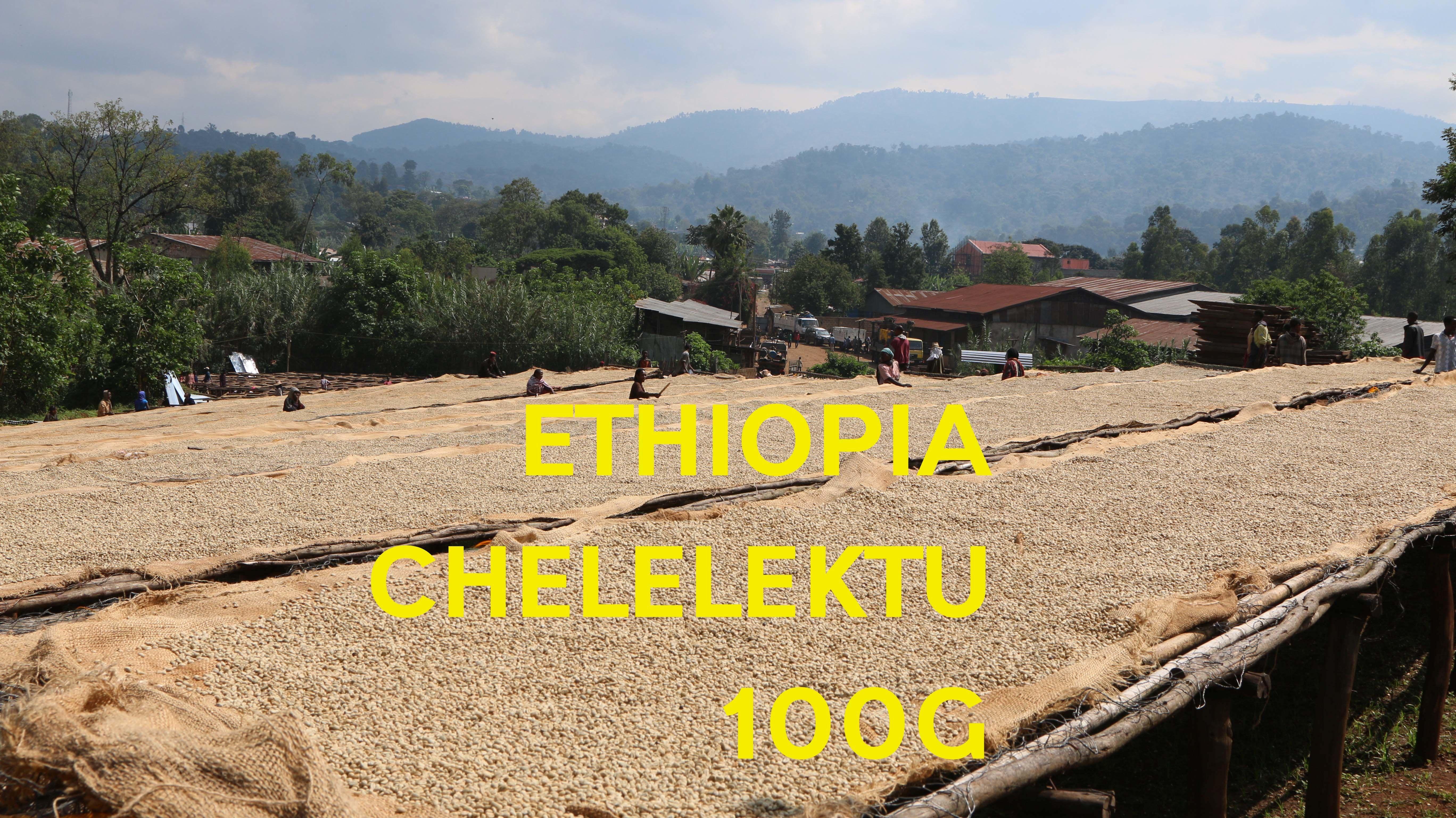 【SPECIALTY COFFEE】100g Ethiopia Yirgachefe Chelelektu 1.600-2.000m F. W. / エチオピア イルガチェフ チェレレクトゥ F.W.