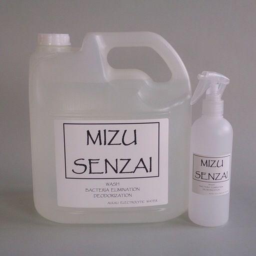 水洗剤(pH13.0) 5?ボトル(ミニスプレーボトル付)