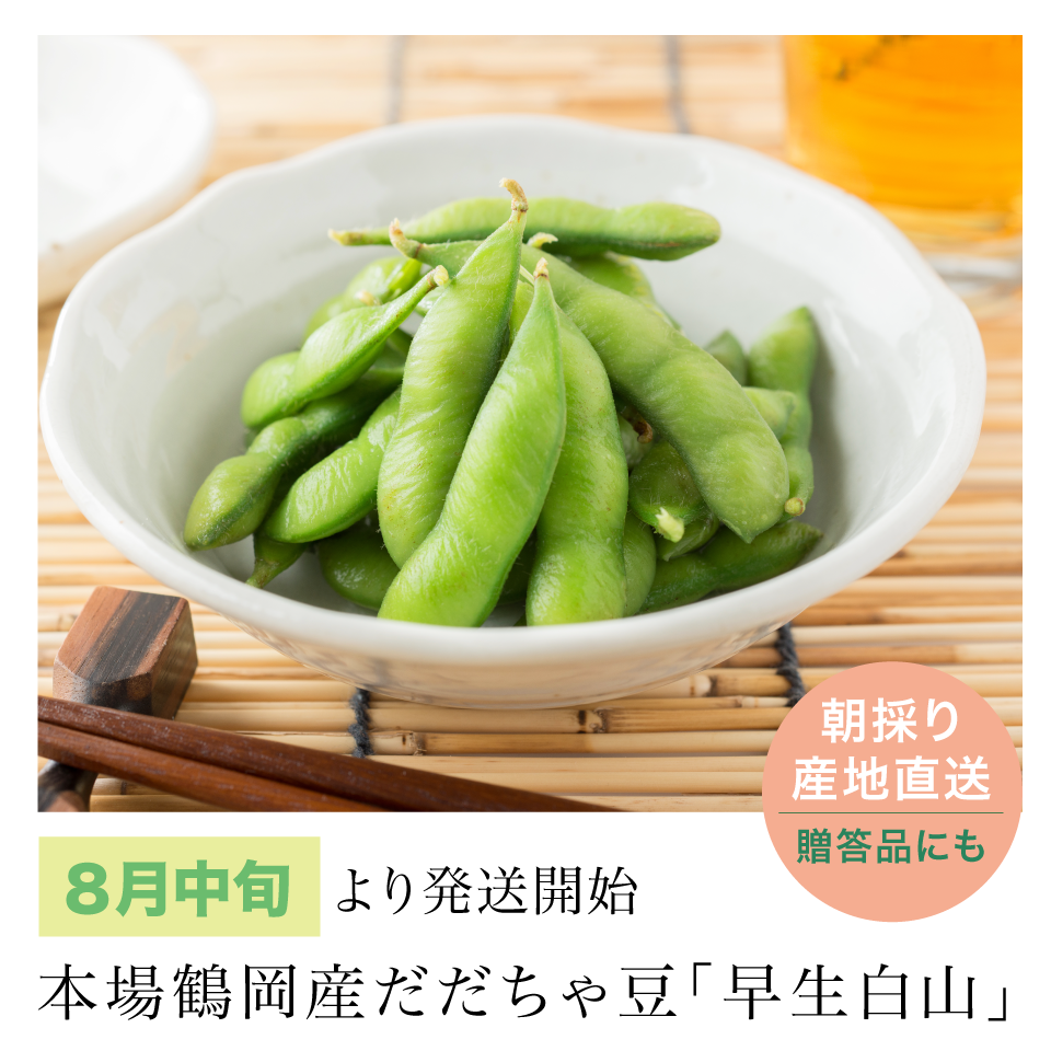 だだちゃ豆「早生白山」8月中旬~発送