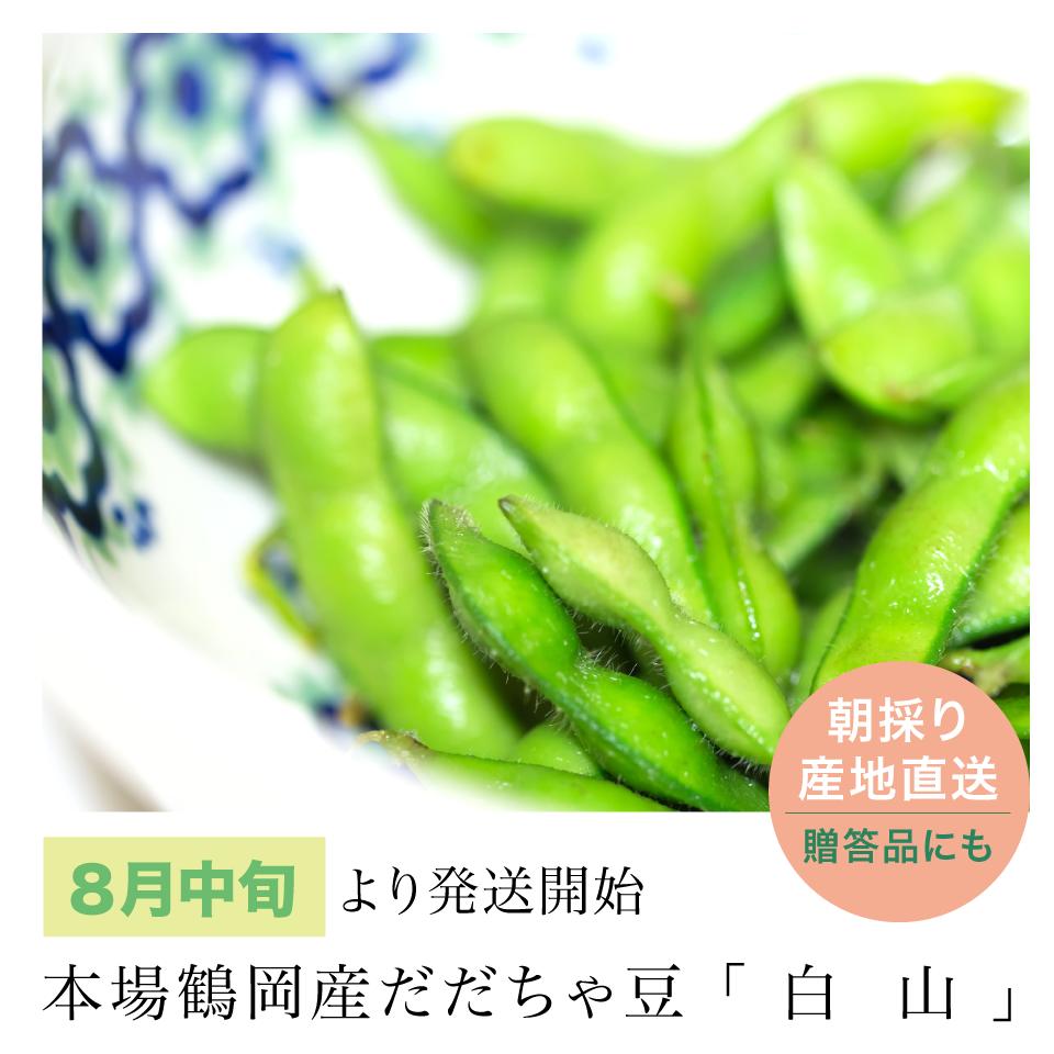 だだちゃ豆「白山」8月中旬~発送開始