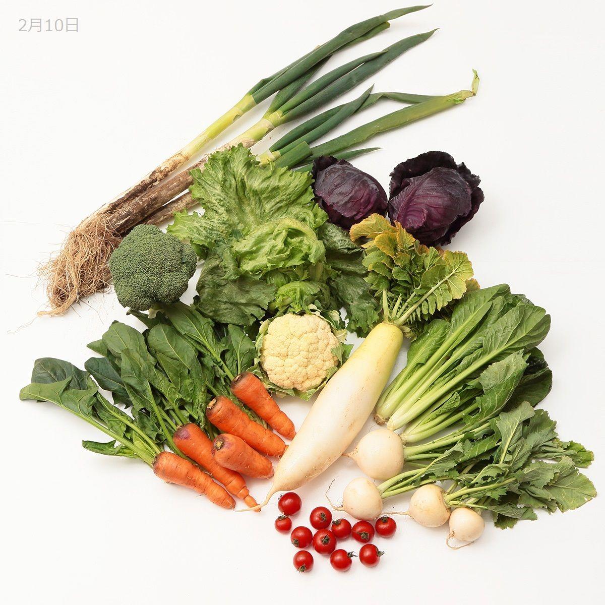 おためし購入野菜セット(大)
